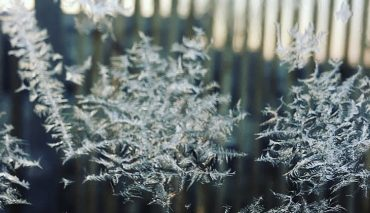 Pour ne pas prendre de poids en hiver il faut…
